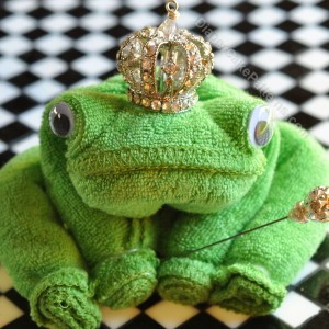 Washcloth Frog Video Tutorial